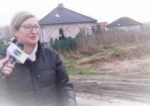 Storczykowa, Wrzosowa, Błotna.. (video)