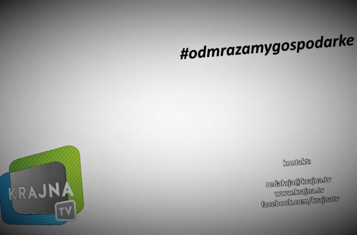 Odmrażamy gospodarkę (video)
