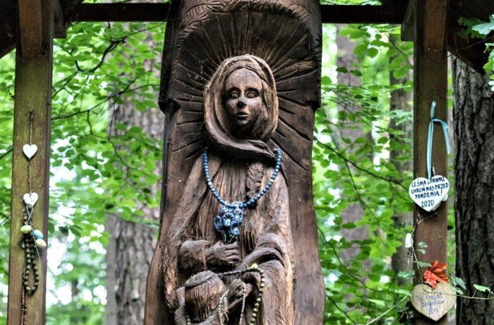 Leśna Panna w głębi lasu (video)