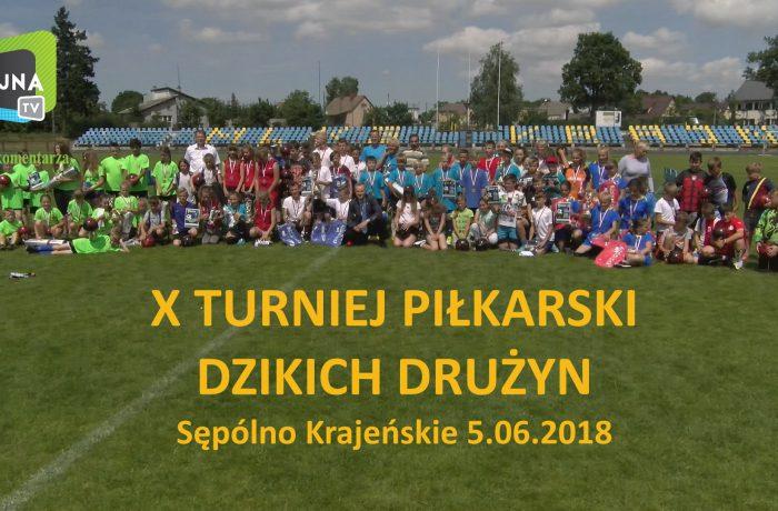 Turniej dzikich drużyn (video)